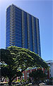 Hawaii Condos - Collection